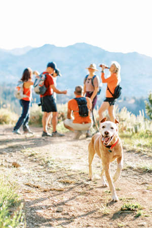 a dog with group of hikers in background