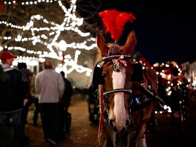 Christmas Traditions horse