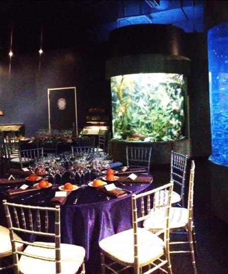 Aquarium meeting room