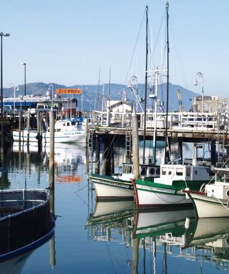 Fishermans Wharf- Fishing Boats