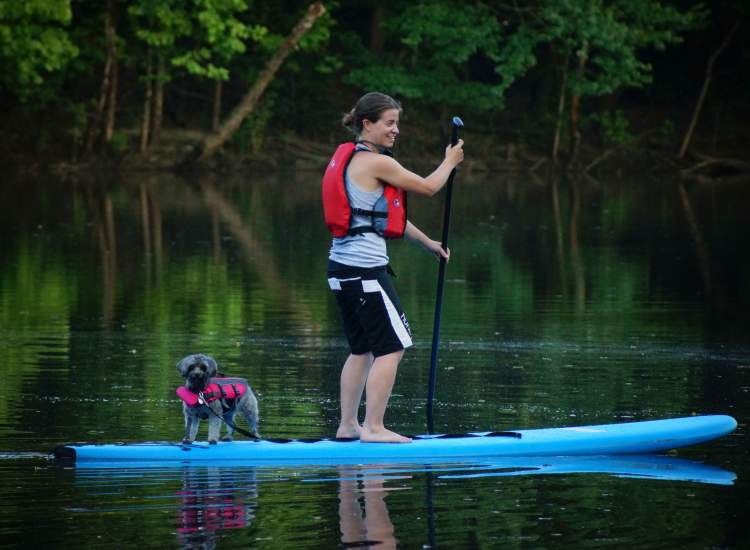 Paddle boarding with Dog