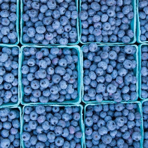 Victor Farmers Market Blueberries