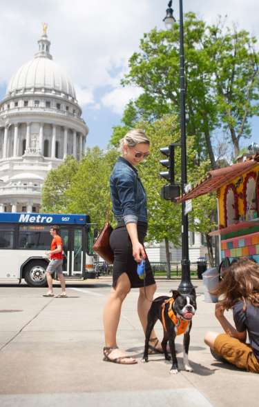 A woman stands in the foreground with a dog and two children, who are sitting on the ground. To her right is a colorful food cart, and the Wisconsin State Capitol sits in the background. A Madison Metro Bus is driving by.