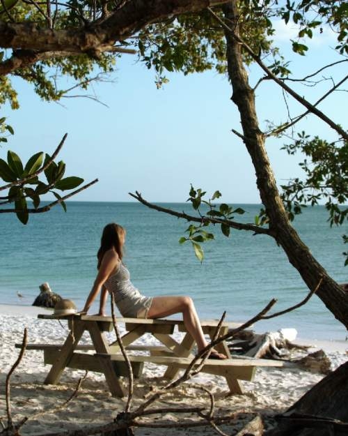 A tranquil moment amongst the trees at Lovers Key State Park