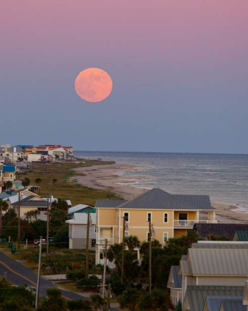Monthly full moon tours of the Cape St. George Light feature captivating coastal views.
