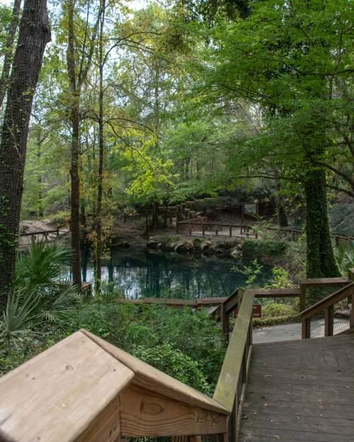 Madison Blue Spring State Park