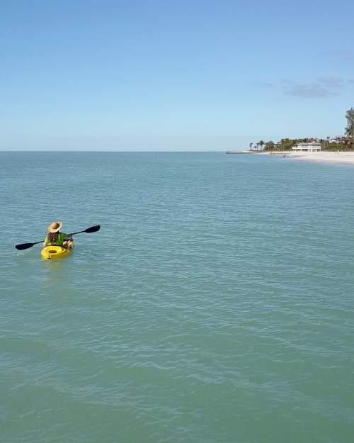 Sarasota kayaker