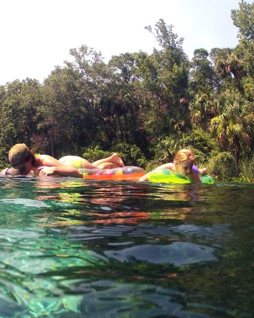 Visitors flock to Alexander Springs Recreation Area to swim, snorkel, dive, canoe, hike and just chill in Ocala National Forest.