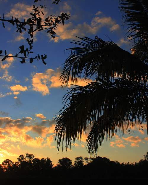 Sunrise paints a beautiful picture over Estero.