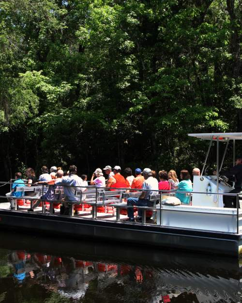 homosassa boat tour