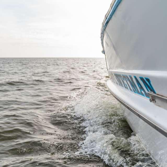 Boat Cruises Header Image