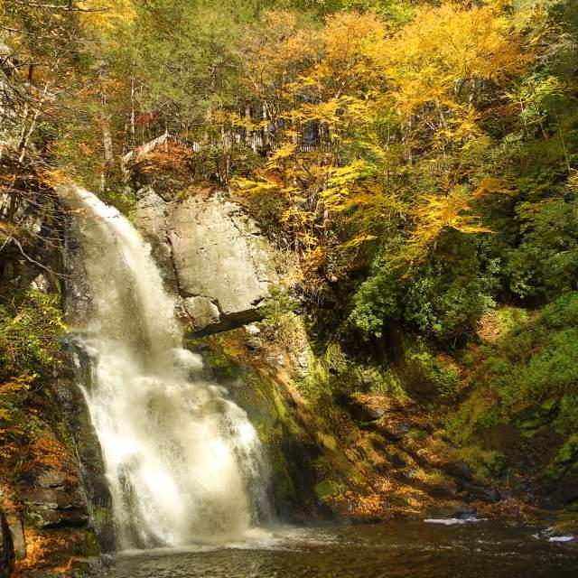 Explore Bushkill Falls in the Pocono Mountains