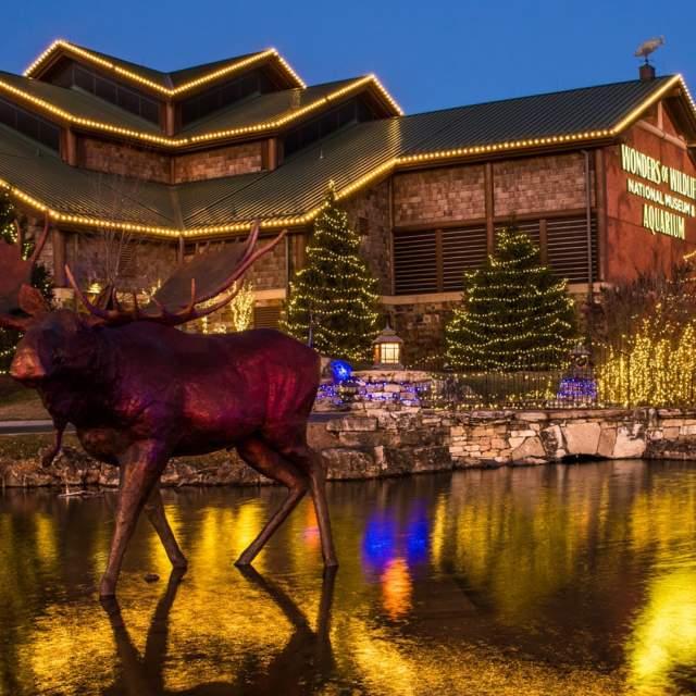 2021 Christmas Lights Springfield Mo Holiday Events Springfield Missouri