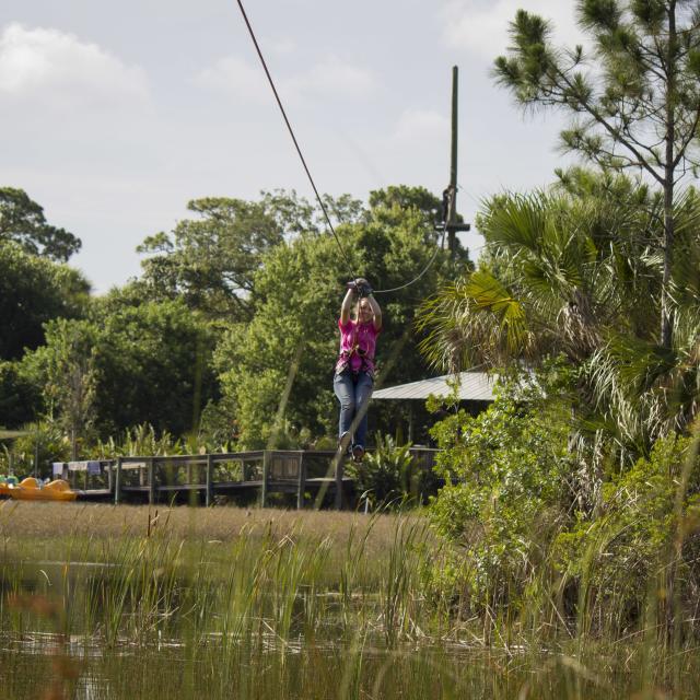 Brevard Zoo zipline on Tree Top Trek
