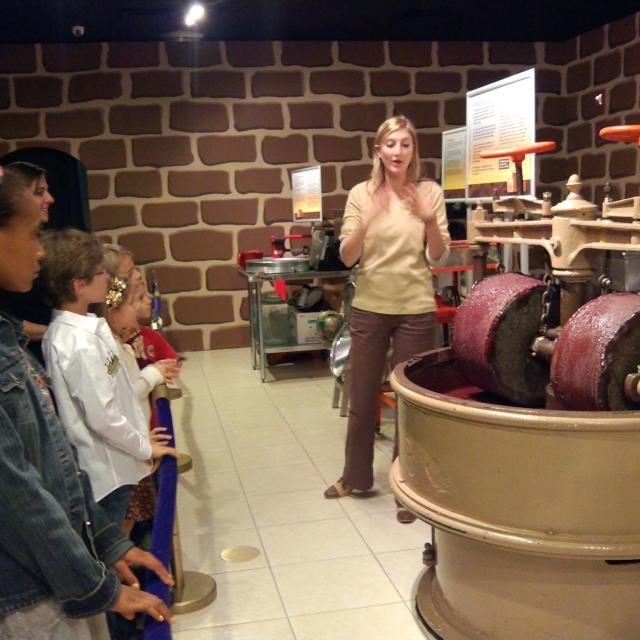 Chocolate Kingdom - Interactive Factory Adventure Tour