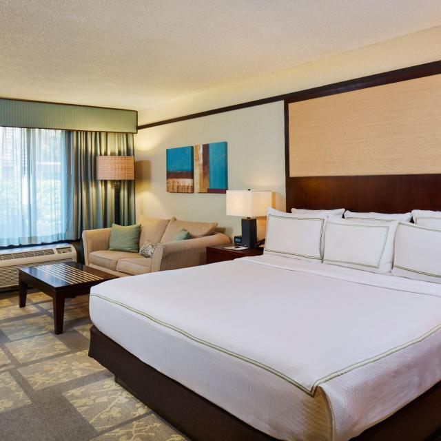 DoubleTree by Hilton Orlando at SeaWorld standard room with king bed