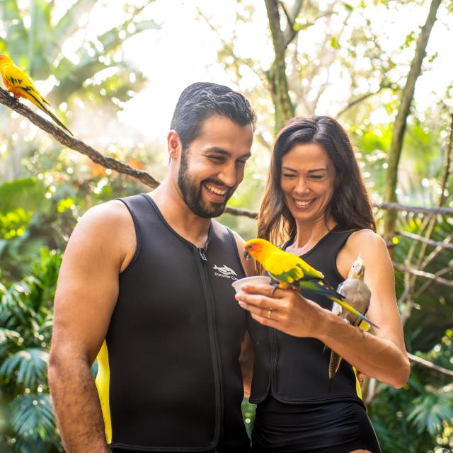 A couple holding birds at Discovery Cove aviary