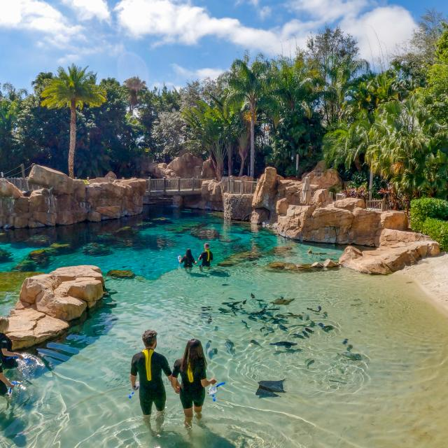 An overhead view of the Grand Reef at Discovery Cove.