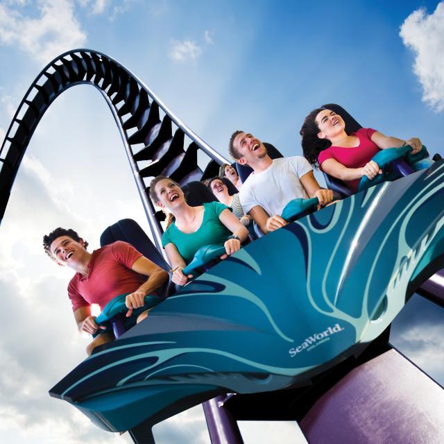 SeaWorld Orlando Mako Coaster drop