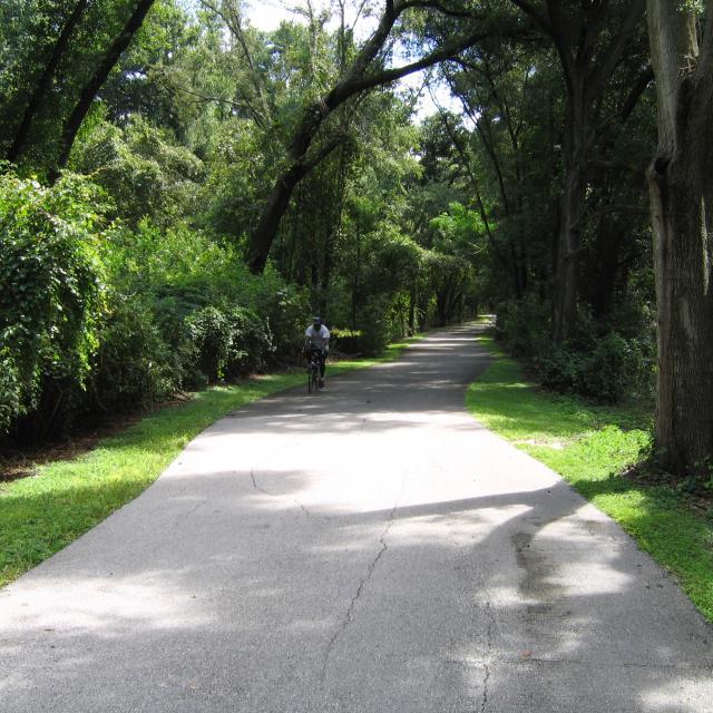 A single rider enjoys a stretch of canopied bike trail on the West Orange Trail