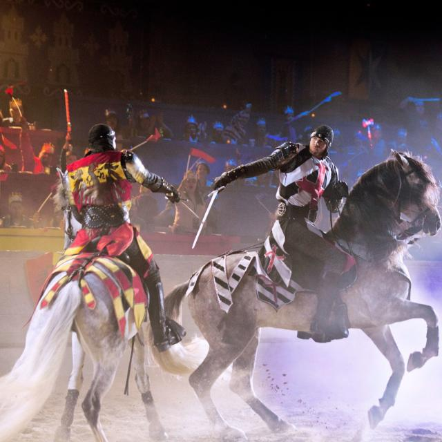 Medieval Times Dinner & Tournament knights battle