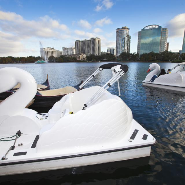swan boats on Lake Eola in downtown Orlando