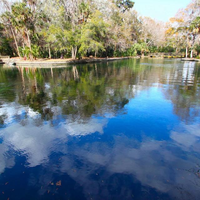 Clouds reflect off the waters of Wekiwa Springs State Park in central Florida.