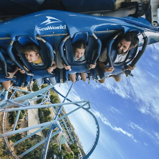 Action shot of a family of four riding on Manta Roller Coaster in SeaWorld