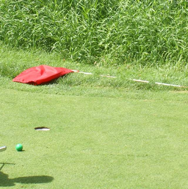 Little Hawk Putting Course
