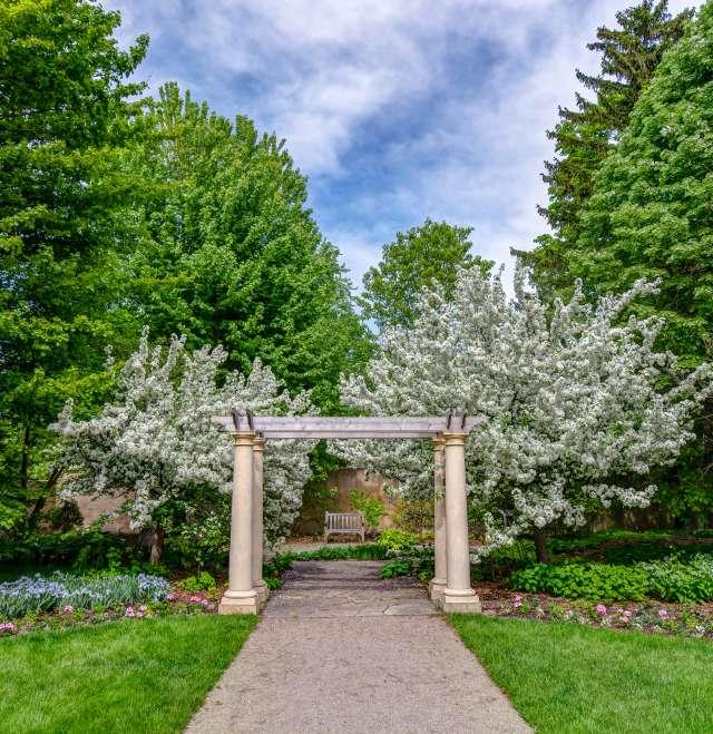 Paine Garden Pergola