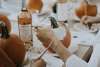 PumpkinGather3.jpg