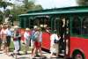 Group Trolley Tours