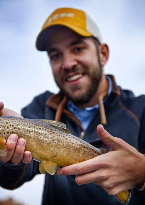 Brown-trout-on-the-North-Platte