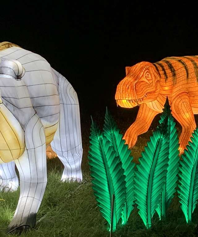lanterns at light show