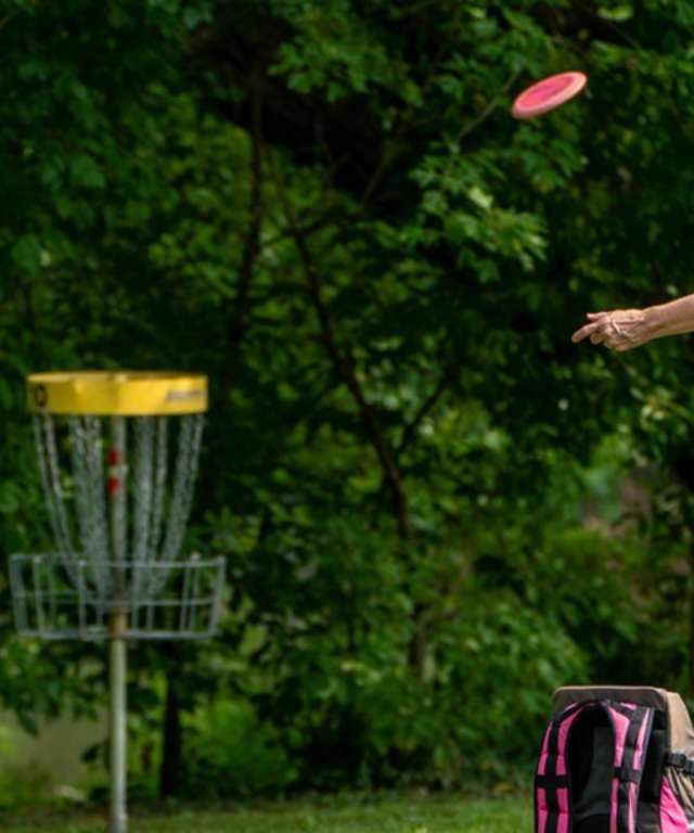 disc golf temp