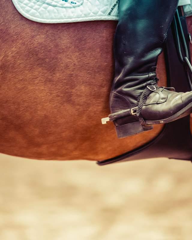 Cowboy Western Horse