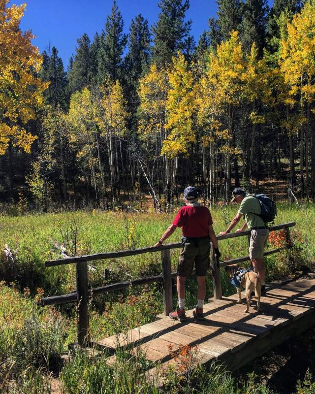 Golden Gate Canyon fall hike with dog