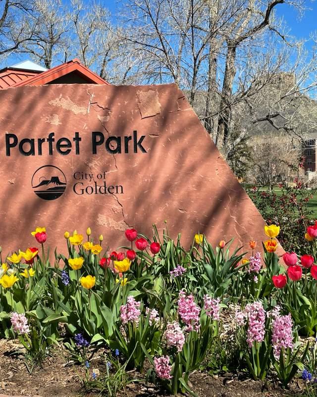 Parfet Park Spring Flowers