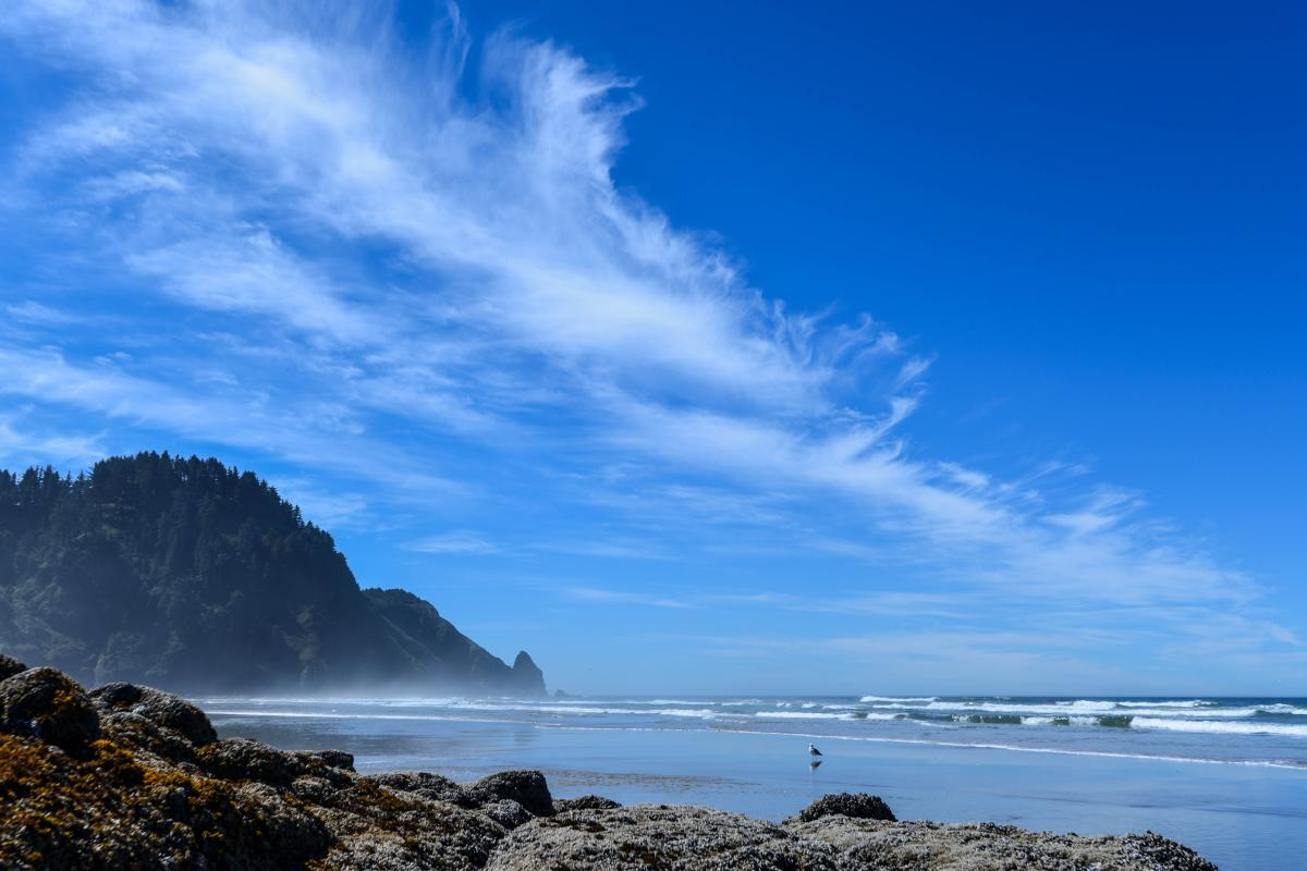 Washburne Beach Coast