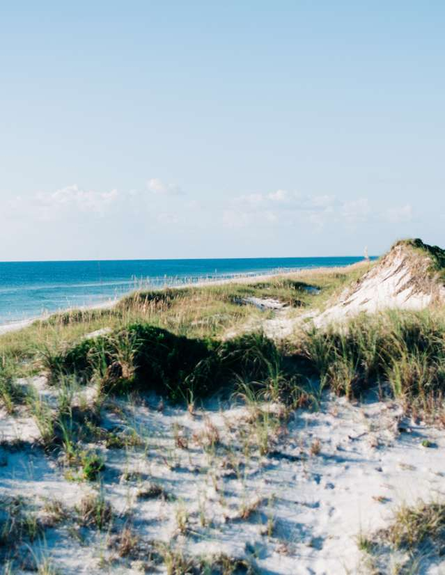 towering natural dunes with lots of sea oats covering the sand and gulf of mexico in the background