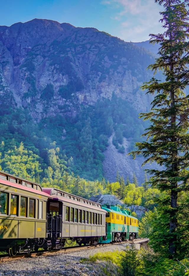 Train mountain tree sign
