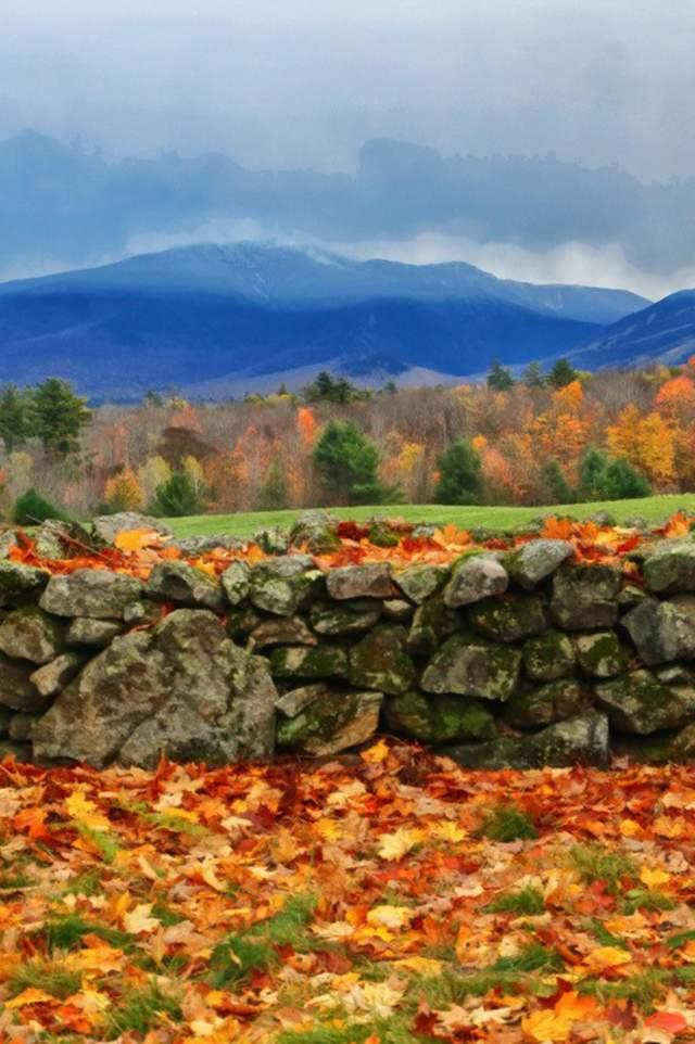 Post Fall Season