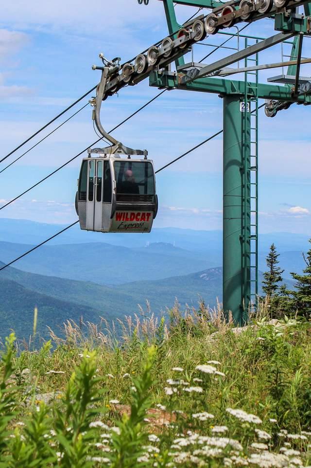 Wildcat Mountain Gondola