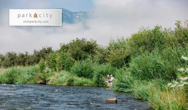 Man learning to fly Fish on Provo River