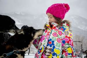 Sled dog leaning into little girl as she pets him