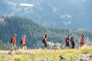 group of hikers with a dog from a distance