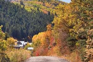 Scenic Drive Image