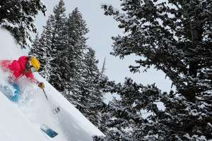Woman in pink jacket skiing powder in Park City, UT