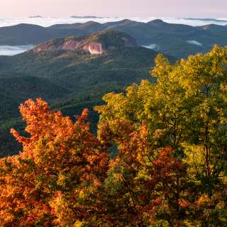 Early fall color develops at Pounding Mill Overlook near Mount Pisgah and Asheville, NC on the Blue Ridge Parkway.