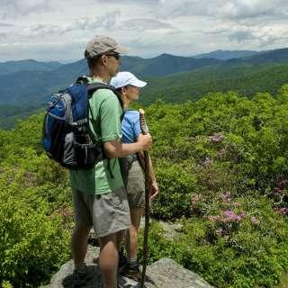 Family Friendly Hikes